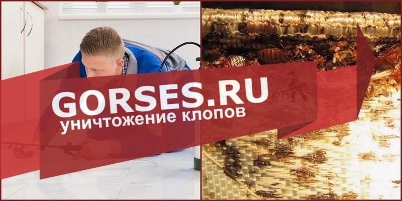обработка клопов Лосино-Петровский