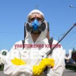 Обработка и уничтожение клопов Можайск