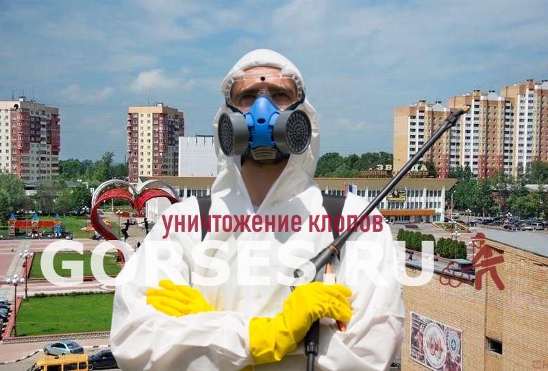 уничтожение клопов Наро-Фоминск