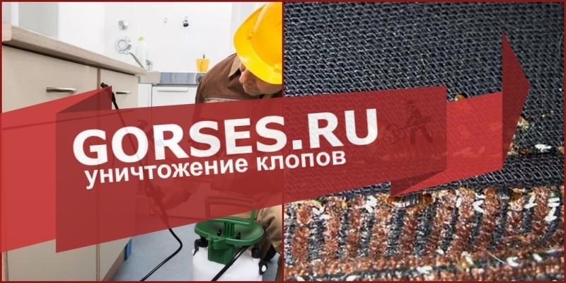 обработка клопов Наро-Фоминск
