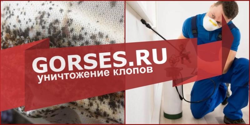 дезинфекция клопов Наро-Фоминск