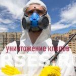 Обработка и уничтожение клопов Пушкино