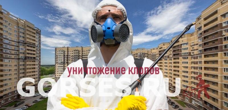 уничтожение клопов Пушкино