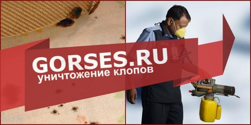 дезинфекция клопов Пушкино