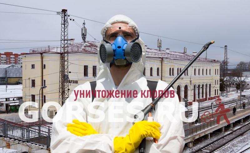 уничтожение клопов Серпухов