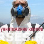 Обработка и уничтожение клопов Солнечногорск
