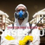 Обработка и уничтожение клопов Воскресенск