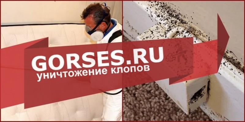 обработка клопов Воскресенск