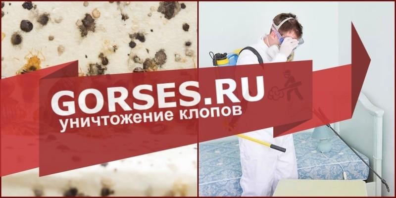 дезинфекция клопов Воскресенск