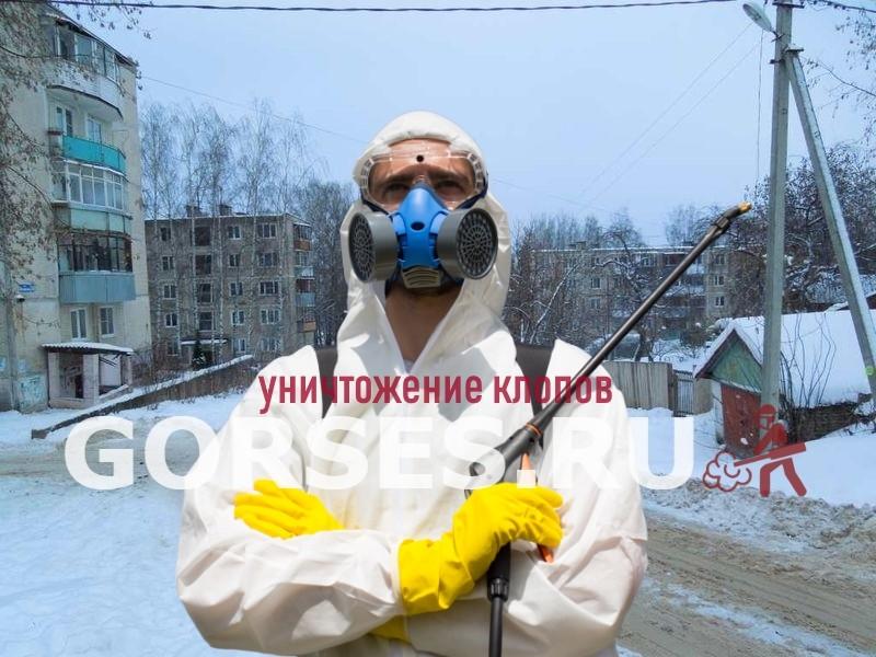 уничтожение клопов Яхрома