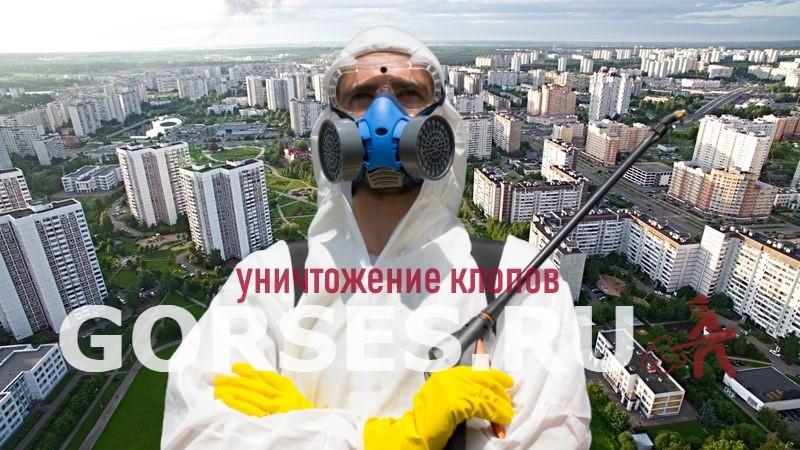 уничтожение клопов Зеленоград