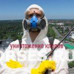 Обработка и уничтожение клопов Жуков