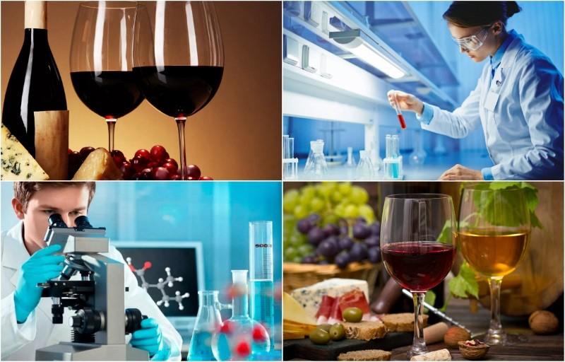 экспертиза вина
