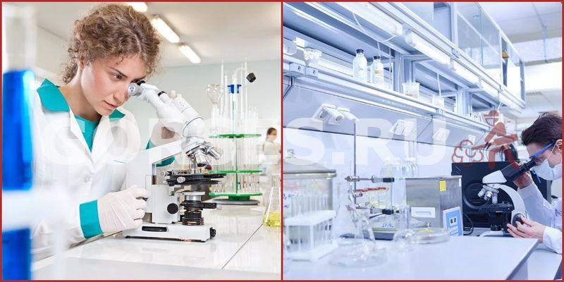 Химический и органолептический анализ Высоковск