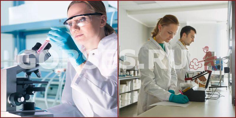 Микробиологический анализ Высоковск